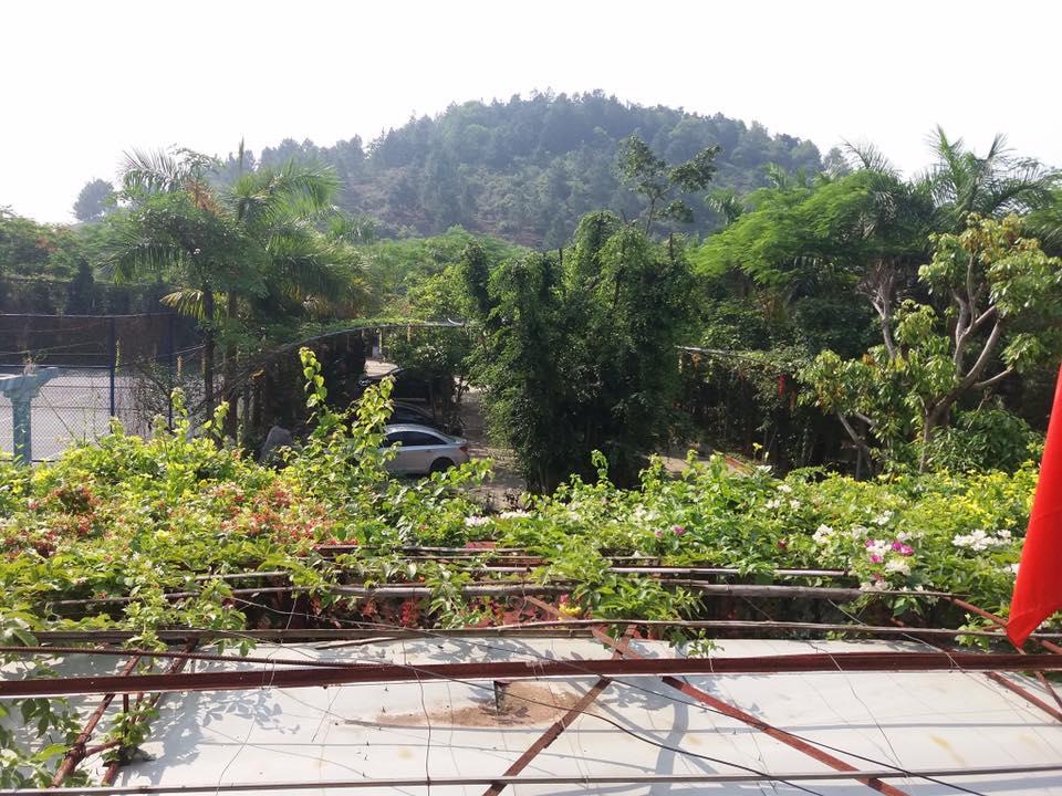 Cảnh quan xanh tại Thanh Lâm